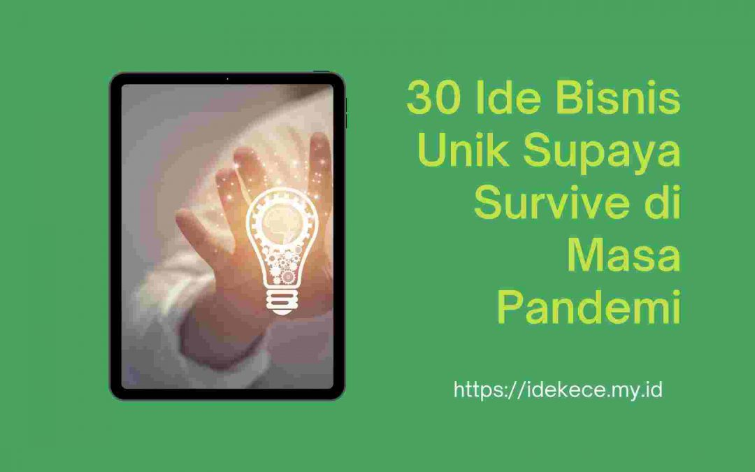30 ide bisnis unik