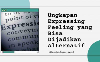 Ungkapan Expressing Feeling yang Bisa Dijadikan Alternatif
